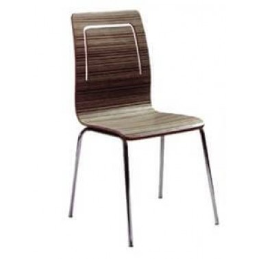 The Bentwood Chair