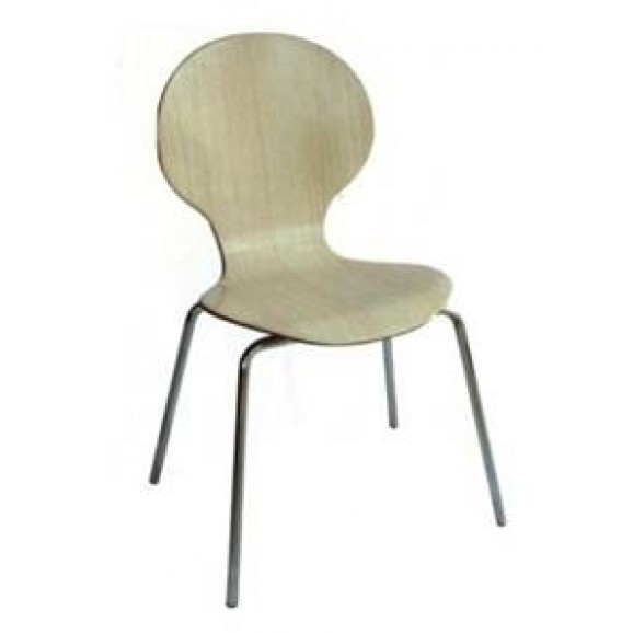 Bent Wood Chair 6